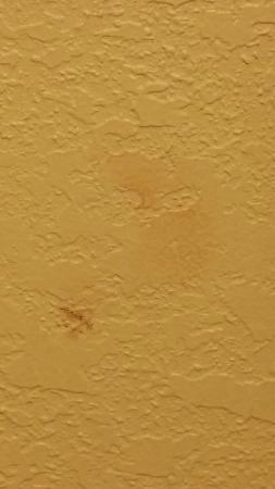 Travelodge Suites Virginia Beach Oceanfront : This appeared to be a makeup smear on the bathroom wall.