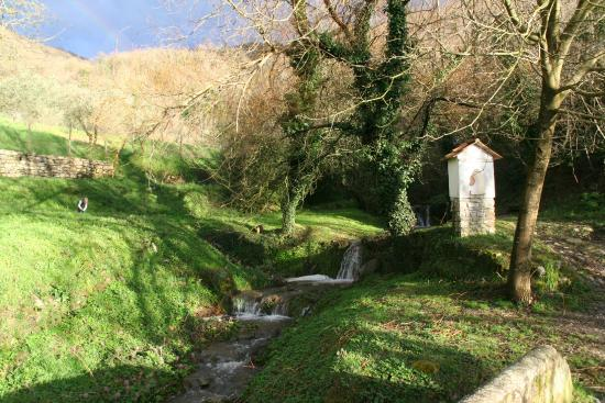 Agriturismo il Ponticello : Waterfall on road up to flats from farm
