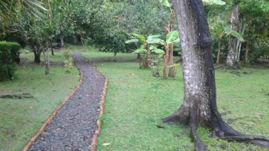 Ciudad Perdida Eco Lodge: Hotel & Hotelgelände