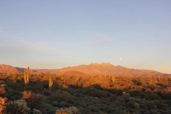 Desert Dog Hummer Adventures: Desert sunset