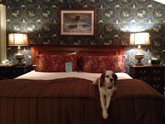 The Dorset Inn: Pet Friendly