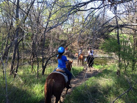 Benbrook Stables: Trails are beautiful this time of year!
