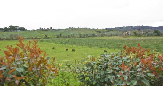 Villa Rignana: view