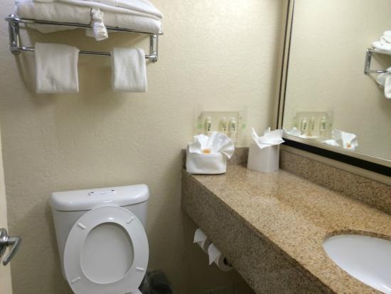Holiday Inn Express Miami Airport Central-Miami Springs : banheiro