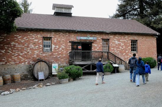 Picchetti Winery: Wine tasting room