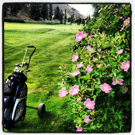Casa Grande Inn: Amazing Golf Courses Near By