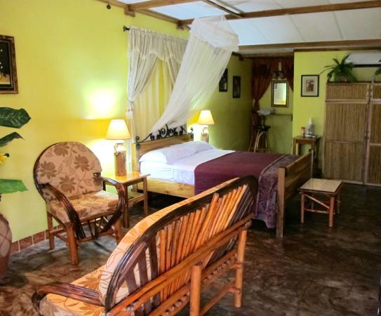 El Caballo Verde Hotel & Restaurante : Our luxury suite