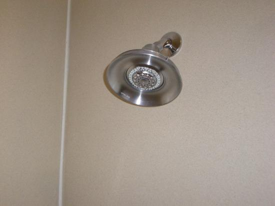 Beau Holiday Inn Express Hotel U0026 Suites   Pensacola West Navy Base: Shower Head,