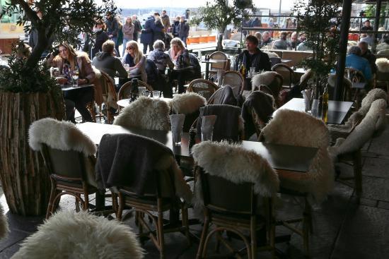 gratis datingsider norge olivia aker brygge åpningstider