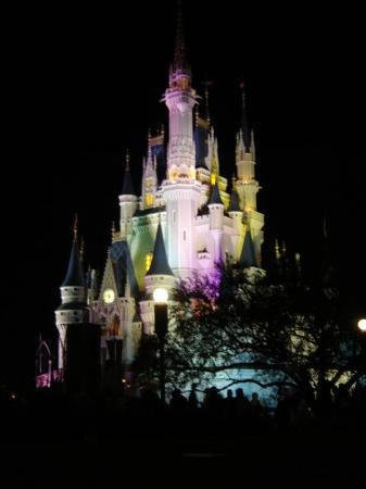 Ultimate Walt Disney World Travel Guide On Tripadvisor