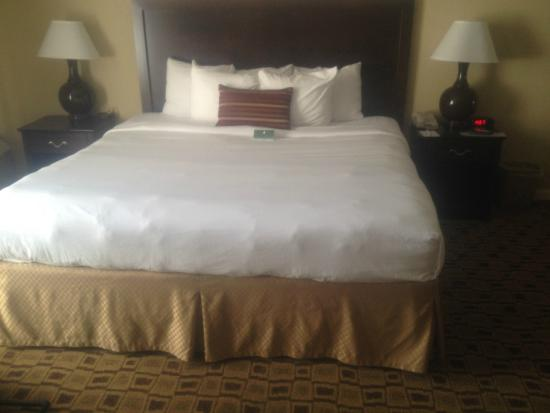 Clarion Hotel Conference Center South: King Size Bed