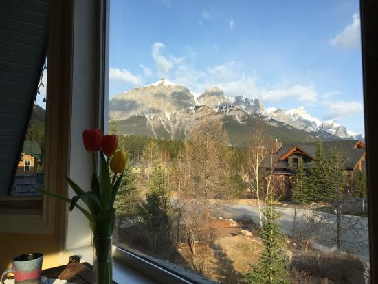 Mountain Lily Bed & Breakfast: View from our room!!