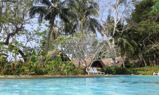 Coral Island Resort: бассейн