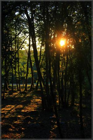 Residence Souillac Golf & Country Club: Couché de soleil vu de la terrasse