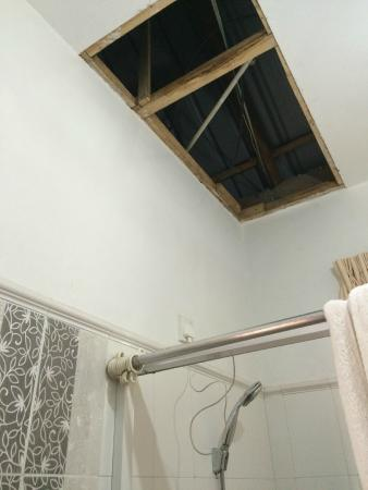 The Gregory House: Shower room with opening to roof space where pigeons live and plug socket above shower