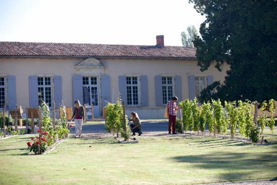 Cadillac, Frankreich: Musée de la vigne et du vin