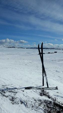 Rodungstol Hoyfjellshotell: Påskekos
