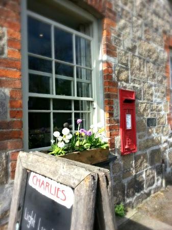 Charlie's Coffee House: flower boxes