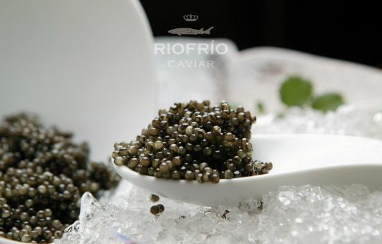 Caviar de Riofrio