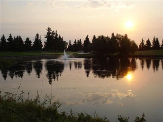 Stony Plain Golf Course: 14 green