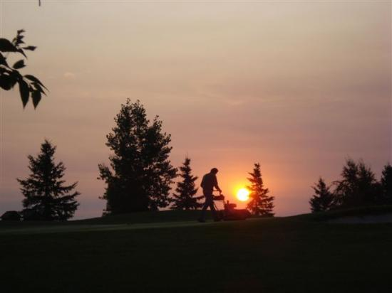 Stony Plain Golf Course: 2 green
