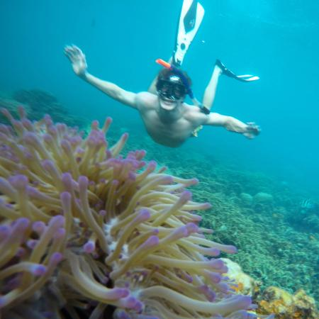 Goodtime Adventures, Koh Tao: Get photo-ops