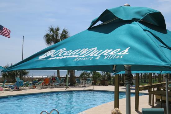 Ocean Dunes Resort & Villas : View from the pool area