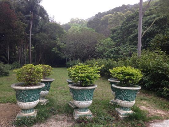 Gaofeng Botanical Gardens