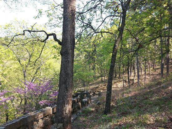Heavener Runestone State Park - Picture of Heavener Runestone Park ...