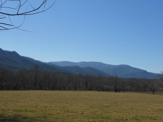 Cades Cove Visitor Center: Along the drive
