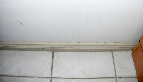 High Cross Park Lodge: Wall & skirting board next to bed under the window, tiles were very dirty