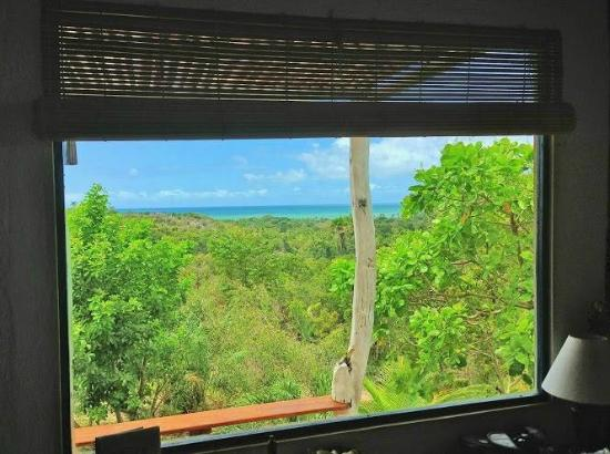 Eco-Pousada Casa Bobo: sea view and Atlantic Forrest view from inside of Moreré Bungalow