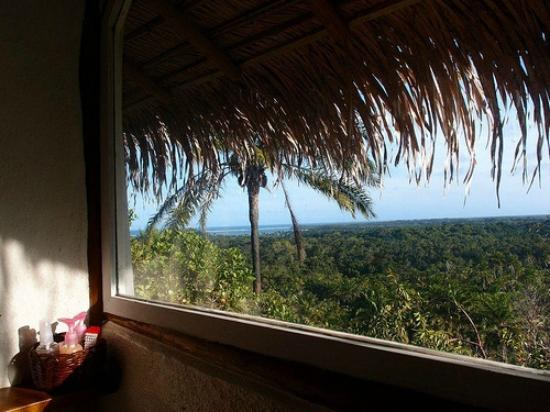 Eco-Pousada Casa Bobo: seaview and Atlantic forrest view from your shower :)