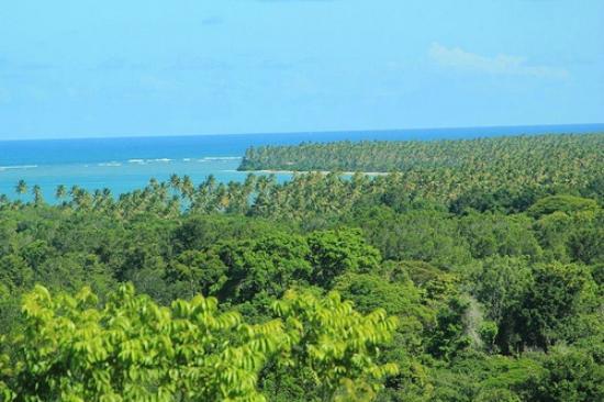 Eco-Pousada Casa Bobo: Bainema Beach-Views from Bainema Bungalow