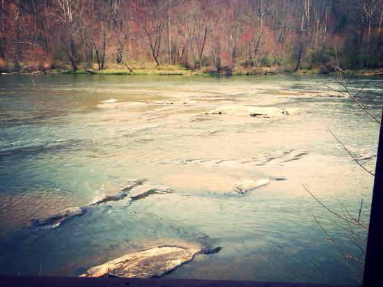 Asheville River Cabins: Listening to the water of the French Broad River was so relaxing