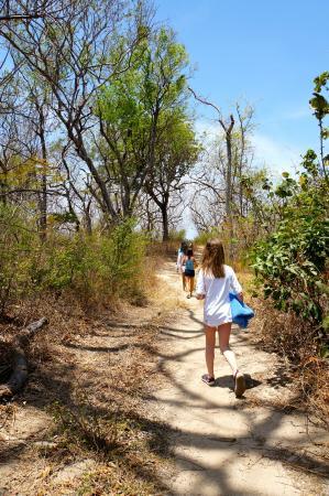 Point Break Surf School : path to the beach