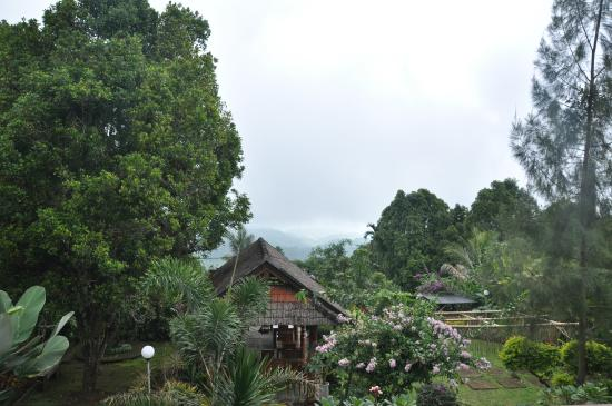 Karangsari Guest House: view from the balcony 2nd floor