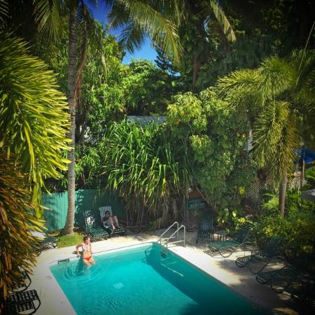Lovely pool lovely setting picture of chelsea house for Chelsea pool garden key west