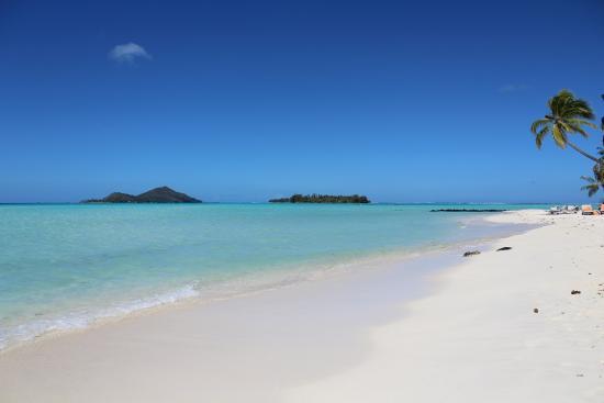 foto de bora bora pearl beach resort amp spa bora bora