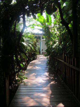 Secret Garden Iguazu B&B : The walkway to the B & B rooms