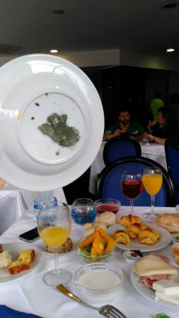 Belver Beta Porto Hotel: Desayuno Intoleable MOHO