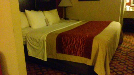 Comfort Inn and Suites Statesville: Bedroom