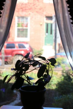 Rachael's Dowry Bed and Breakfast: Beautiful windows with charming views