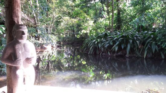 Hacienda La Isla Lodge: Teich