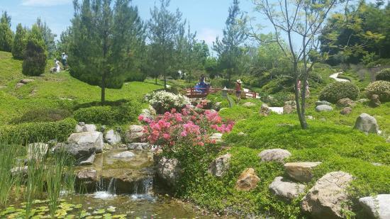 Jardin japones picture of jardines de mexico jojutla for Jardines mexico