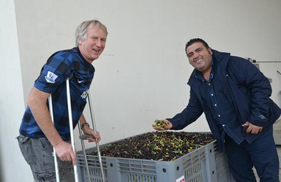 Sicily Blues Tours - Day Tours: Olive Oil Plant