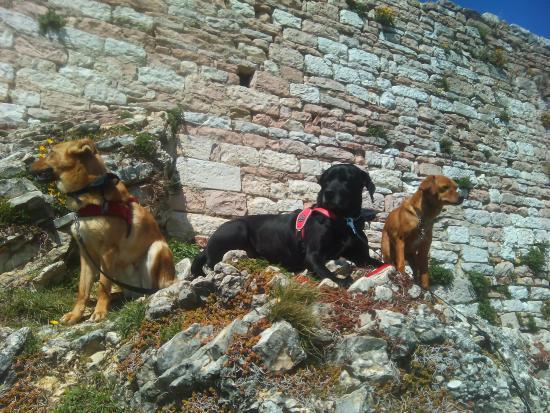 Agriturismo Il Castello: Cora Dial e Mia