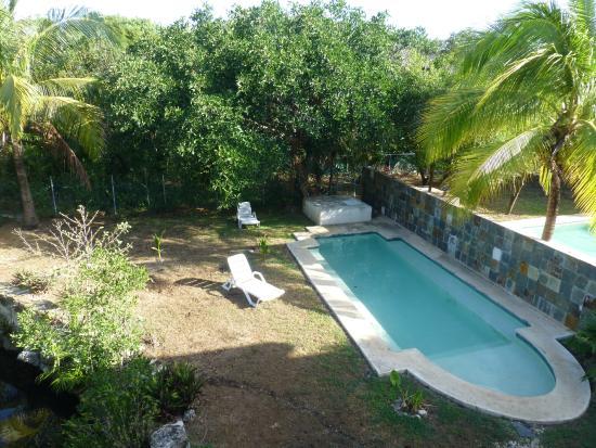 der pool im garten - picture of villas picalu b&b boutique, puerto, Garten und erstellen
