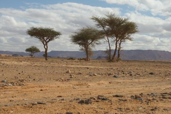 Ouzina, Μαρόκο: viajar a marruecos