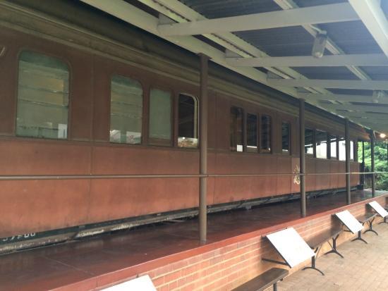 President Paul Kruger House: Trem nos fundos da casa